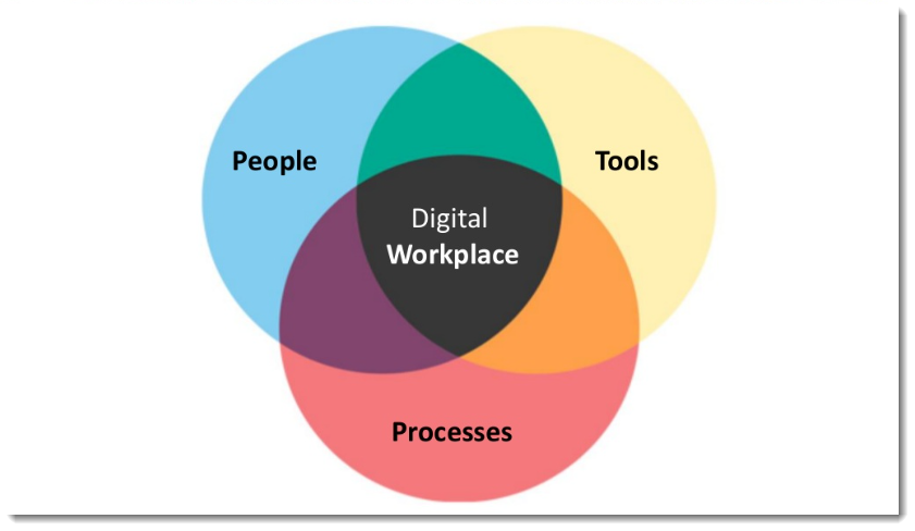 Components of the digital workplace